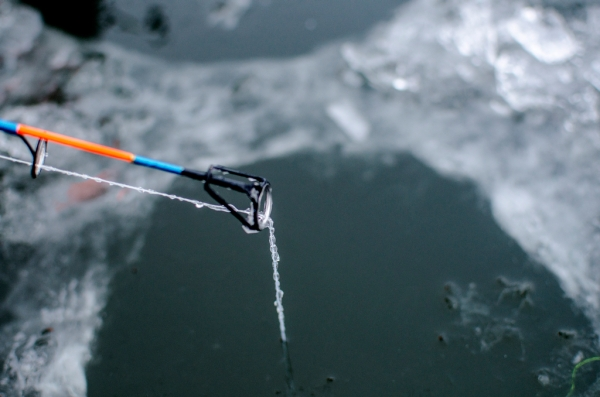 Danielle McGrew | MLive.com Beads of ice form on a fishing line on the Saginaw Bay in Linwood on Friday, Nov. 29. Josh Appold estimated the ice to be about four inches thick.